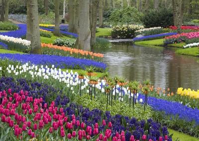 Gartengestaltung in der Niederlande