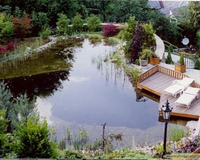 Schwimmteich mit Holzdeck