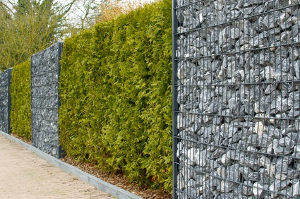 Sichtschutz gabione hecke gardomat - Garten steinmauer gabione ...
