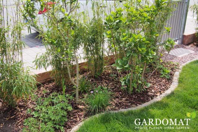 Gestaltung bambushecke sichtschutz grenze gardomat - Kleiner garten sichtschutz ...