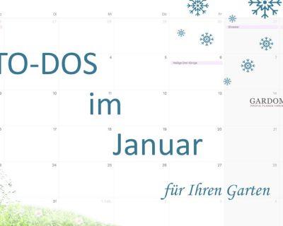 to-dos-im-januar