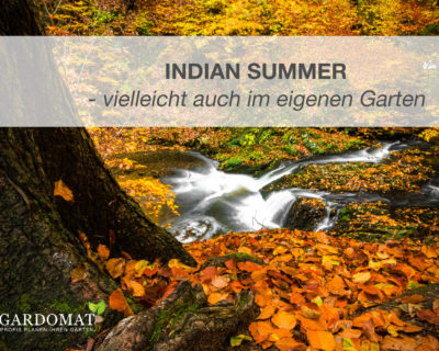 Einstiegsbild Artikel Indian Summer
