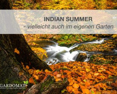Einstiegsbild Artikel Indian Summer