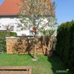 Vorher Foto 3 vom kleinen Garten