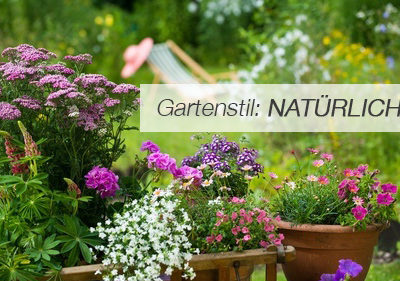 Einstiegsbild natürlicher Garten