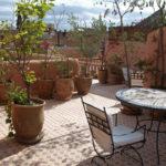 sonniger Sitzplatz mit Kübelpflanzen