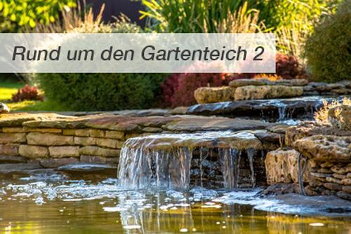Rund um den Gartenteich - Teil 2: Deko am Teich - Gardomat