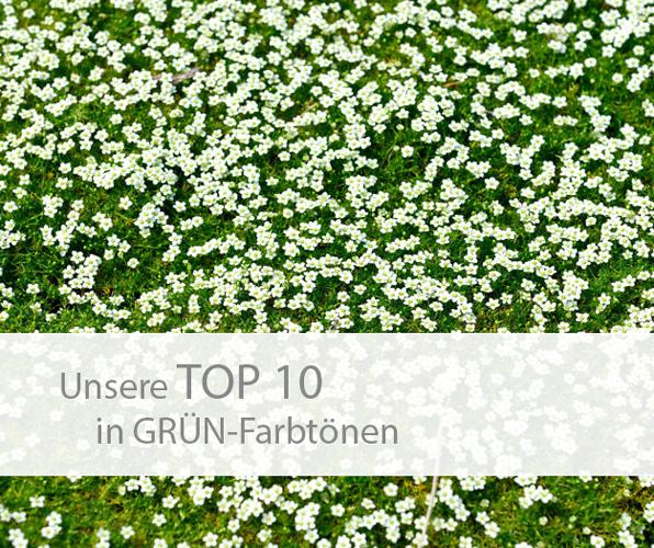 Einstieg TOP 10 grün