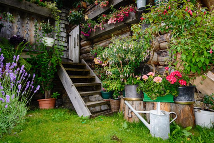Begrünung/ Bepflanzung ist überall möglich
