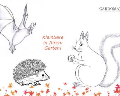 Einstiegsbild zum Thema Kleintiere im Garten