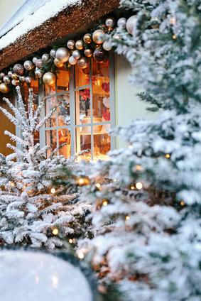 Vom Schnee eingestäubte Nadelgehölze & weihnachtliche Dekoration.