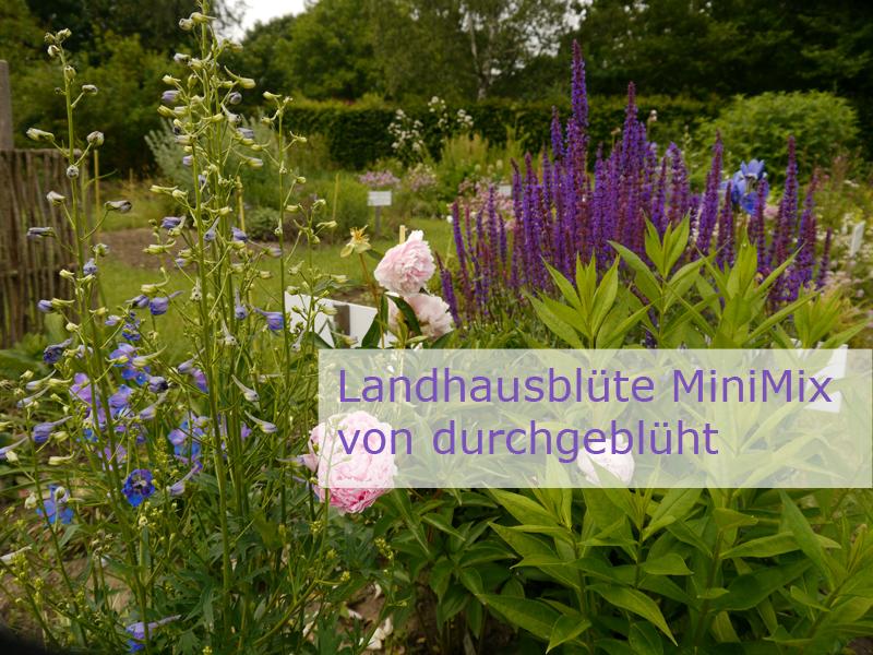 Einstieg zum Thema Landhausblüte MiniMix