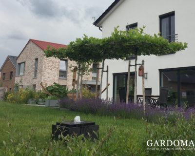 Titelbild Garten modern und romantisch