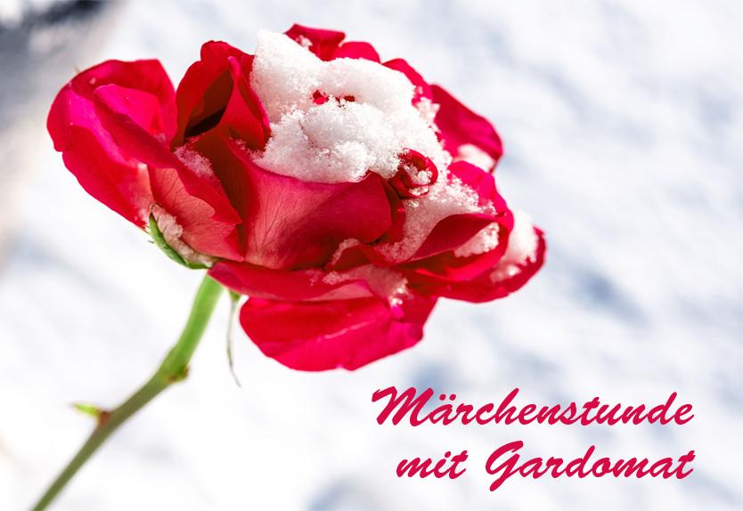 Titelbild Schneeweißchen und Rosenrot